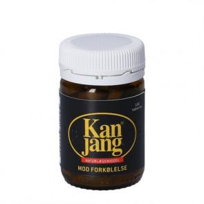 Kan Jang 100 tabletter